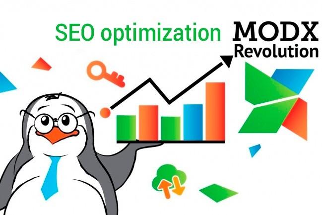 Создание сайта на CMF Modx - SEO оптимизация