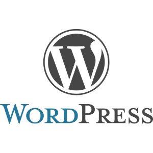Создание интернет магазина Word Press - Интернет магазин на Word Press
